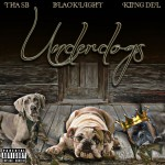 "(New Mixtape)-@THAORIGINALSB @blacklight608 @kiingdel ""The Underdogs"""